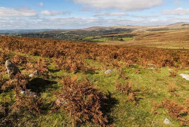 Pull on those walking boots and enjoy the therapy that Dartmoor has to offer.