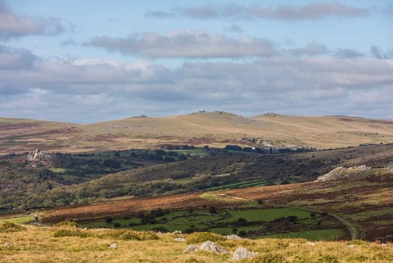 The wilds of Dartmoor await.
