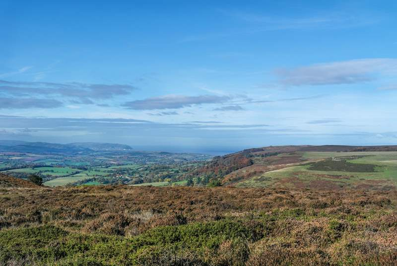 The views across the Quantock Hills are quite special.