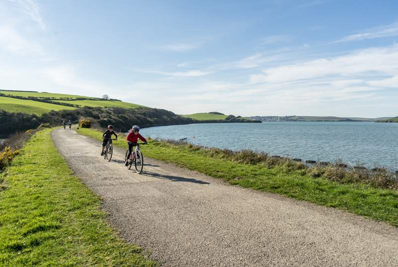 Hire a bike in Padstow or Wadebridge to cycle the Camel Trail.
