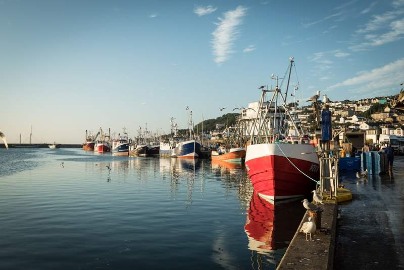 Along the coast is Newlyn, still very much a working fishing port.