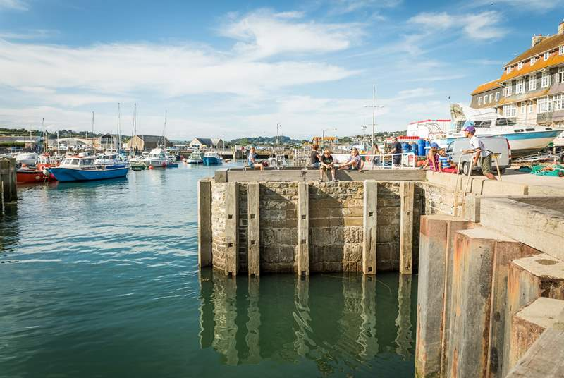 West Bay harbour is a perfect spot for fish and chips!