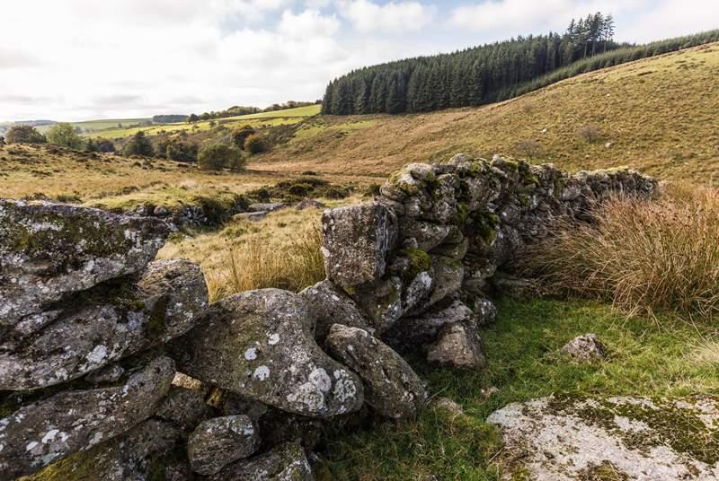 Dartmoor never disappoints.