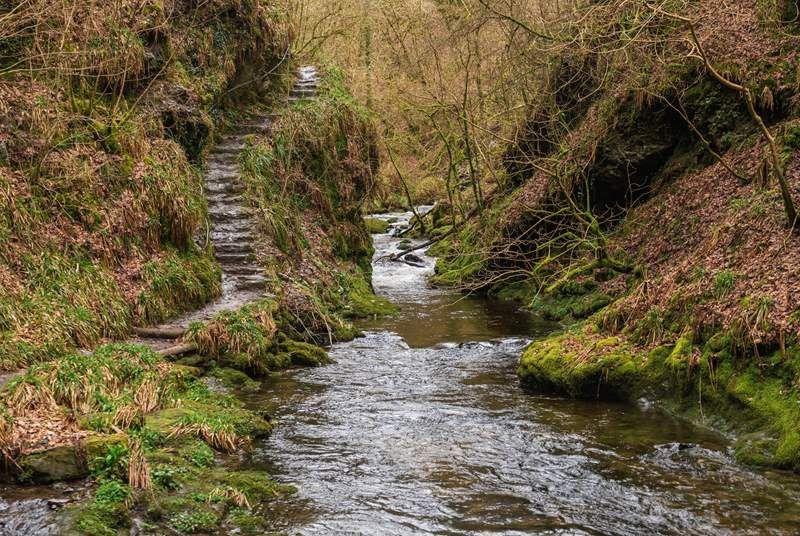 Lydford Gorge is somewhere to add to your to visit list while staying at Churchgate Cottage.