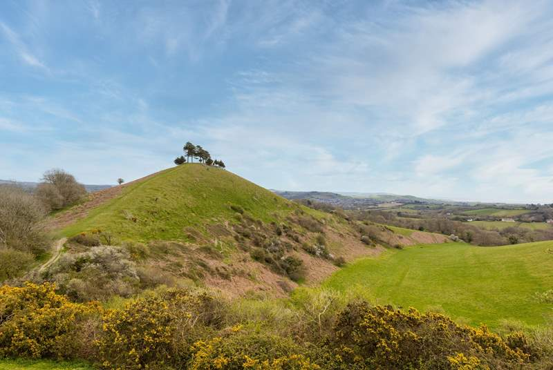 The view at the top of nearby Colmer's Hill is well worth the walk.