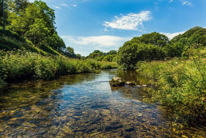 Pack up a picnic and go paddling in the River Barle.