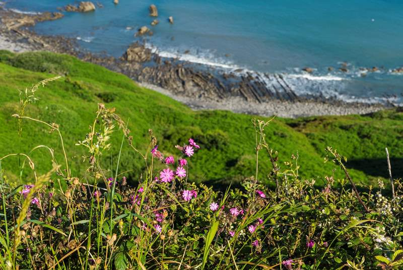 The wonderful north coast of Cornwall.