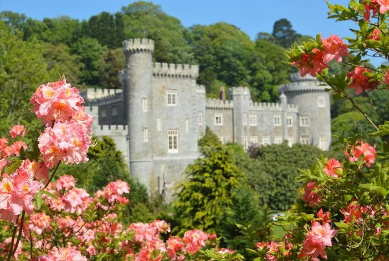 The splendid Caerhays Castle and gardens.