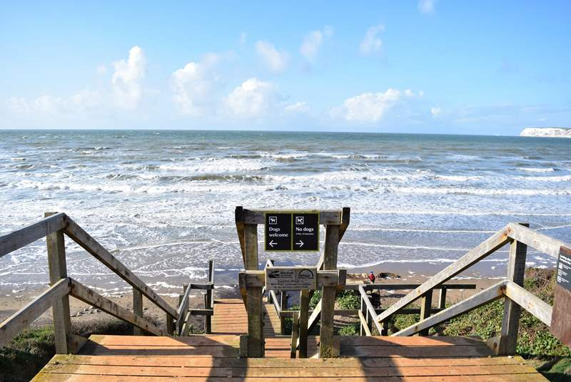 Spend an afternoon at Compton Bay which is a dog friendly bay to one side.