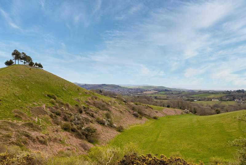 If you are feeling energetic then walk to the top of Colmer's Hill - the view is special.
