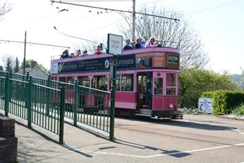 Seaton Tramway runs from the tram station in Seaton alongside the river Axe to the historic village of Colyton.