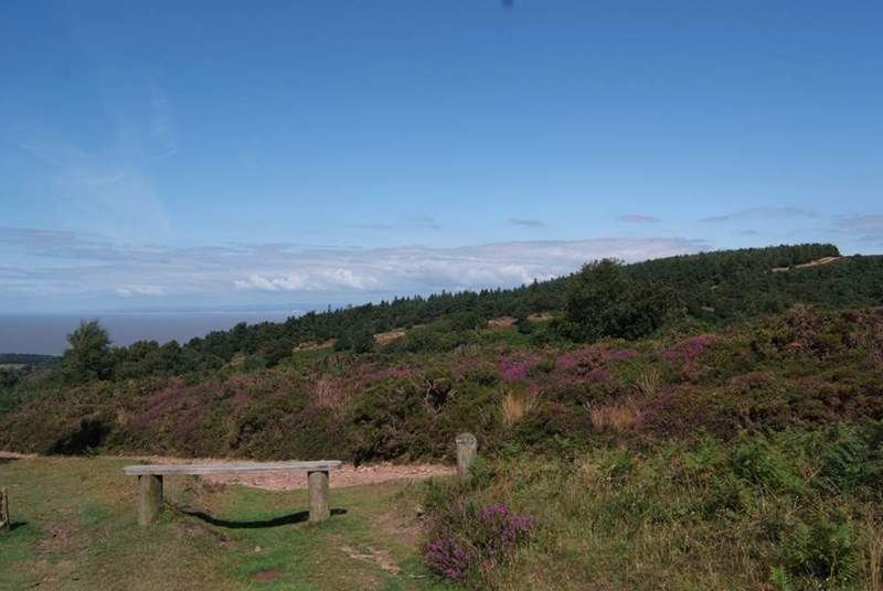 Take a picnic up into the hills and look out across the Bristol Channel to south Wales.