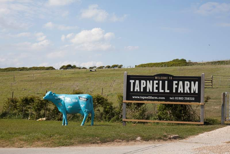 Spend the day with the family exploring Tapnell Farm.