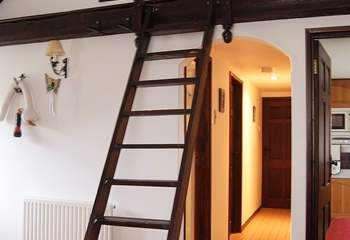The wall ladder leading up to the 'den' -  please supervise younger children on their way up and down.