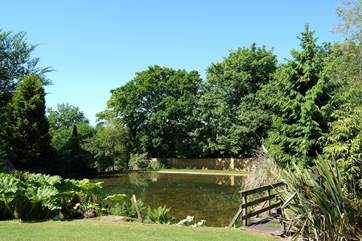 The pretty wildlife pond - take care with toddlers.