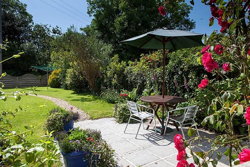 The view from the front door of Rosemeadow across the sunny enclosed garden.