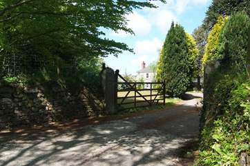 The entrance driveway.