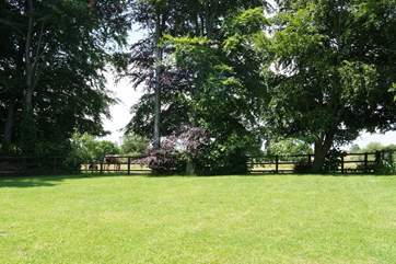 The lovely enclosed garden in the summer, ideal for your four-legged friend.