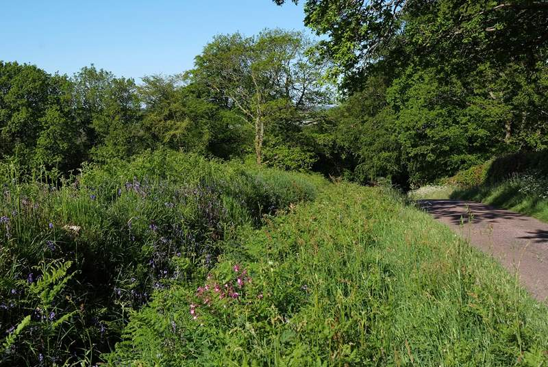 Little Leywood is so easy to get to - and to help to start your holiday the last half a mile is down a beautiful country lane.