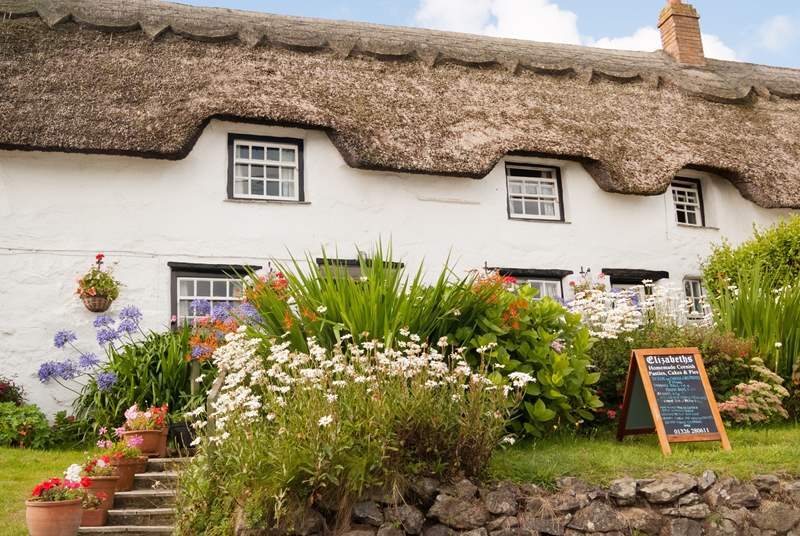 Why not try a home-made cake or two from Elizabeths or the local village shop.