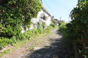 The footpath to the cottage. (Man o' War's front garden wall is in the middle of the photograph, just beyond the thatched cottage on the left.)