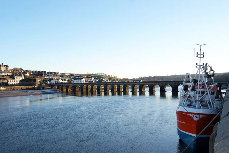 Bideford Quay - you can take a day trip by boat to Lundy Island from here.