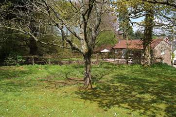 This is a view of the cottage from a little woodland field above it - where you are welcome to walk your dogs or have a picnic.