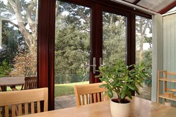 Woodland views from the dining-table and terrace.