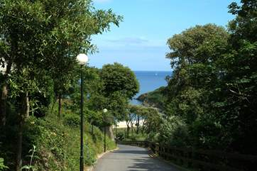 Looking down the driveway from the Maenporth Estate towards the beach below.