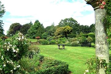 A view of the Owner's 'white' garden.