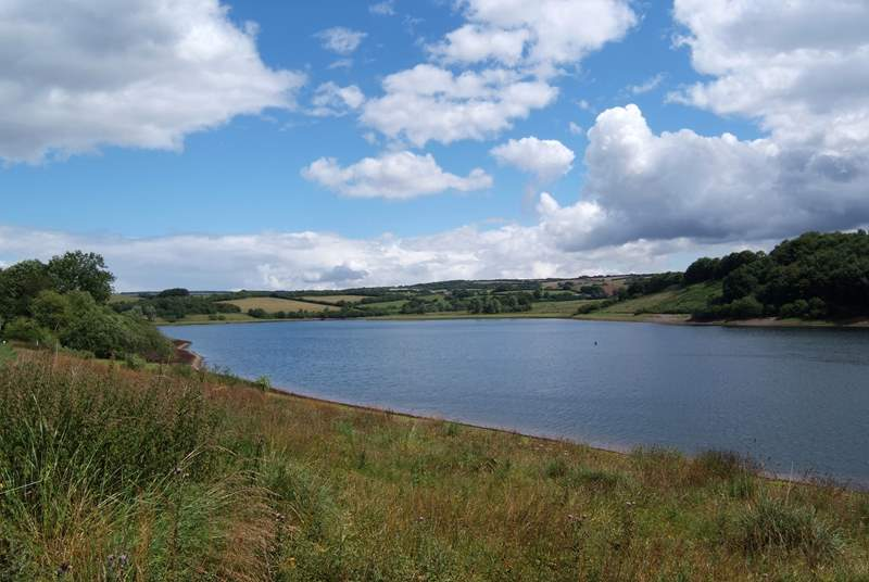 This is Wimbleball Lake on Exmoor - a great place for lakeside walks with your dog.