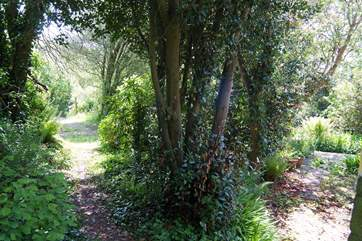 The path leading from the cottage to the parking-area.