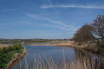 Another newly created visitor attraction is the Seaton Wetlands - a peaceful nature reserve which attracts many species of birds.