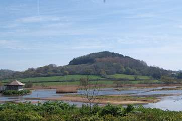 You can visit the Seaton Wetlands any time but the bird hides are not open every day so do check.