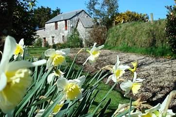 Perran's Barn in spring time.