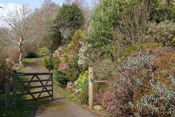 Follow the lane up the path to the Owners' cottage or just to explore the wonderful grounds.