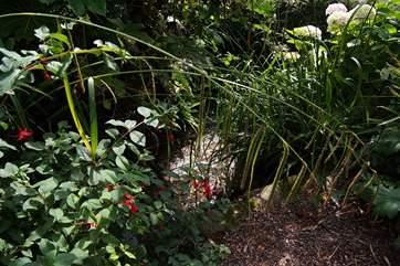 A tiny little brook runs along the boundary of the garden.