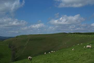This stunning iron age fort, Eggardon Hill, is just the other side of Bridport.