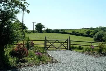 The three acre paddock next to the cottage, which guests are welcome to use.