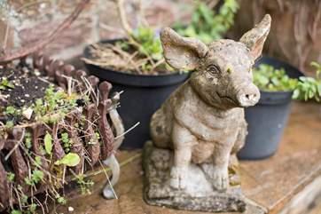 This little piggy didn't go to market...