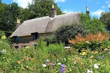 Hardy's Cottage nearby - photo kindly taken by the Dorset Area of Outstanding Natural Beauty team.