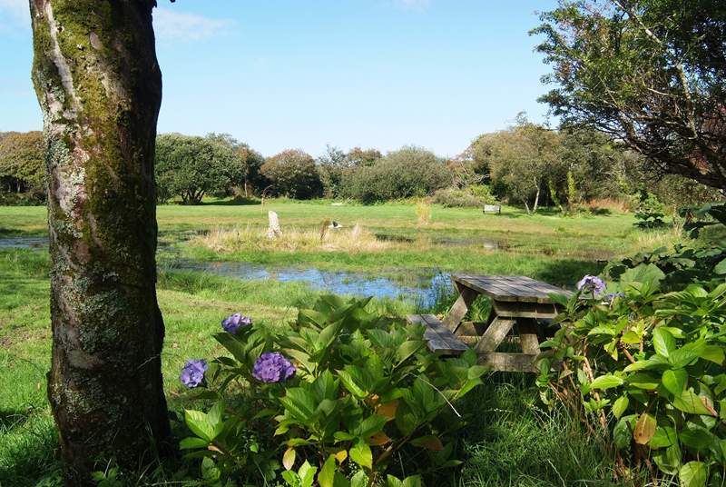 The view of the wildlife pond and the meadow.