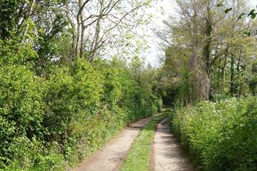 A view in spring of the narrow unmade farm track leading down to the cottage.