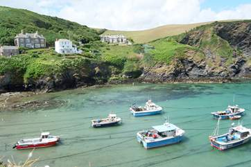 Port Isaac harbour offers endless hours of watching out for Doc Martin stars or Fisherman's Friends!