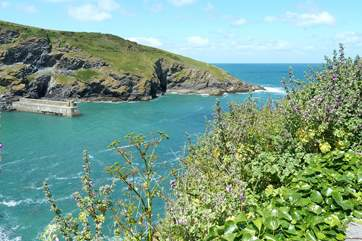 The harbour from the cliff edge at Port Isaac.
