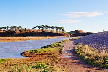 The beautiful River Otter at Budleigh Salterton, you can park in Otterton and follow it all the way to the coast.