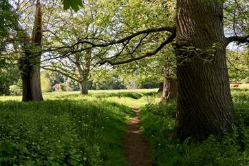 There are some wonderful walks on the doorstep. The Perrott Trail can be joined just a short stroll away through the grounds of Manor Farm