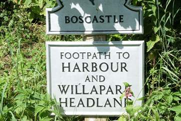 The walks are stunning and protected by the National Trust.