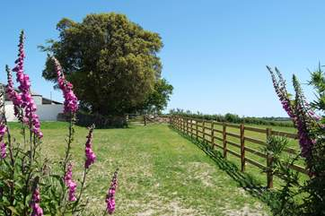 The shared lawn is fenced off from the farmland.