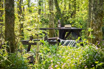 Take a picnic with you into the woods and follow the paths to the secluded seating place.